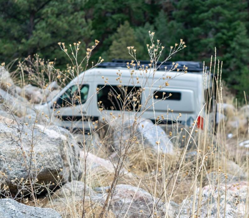 An adventure van parked in the forest, partially obscured by tall grass.